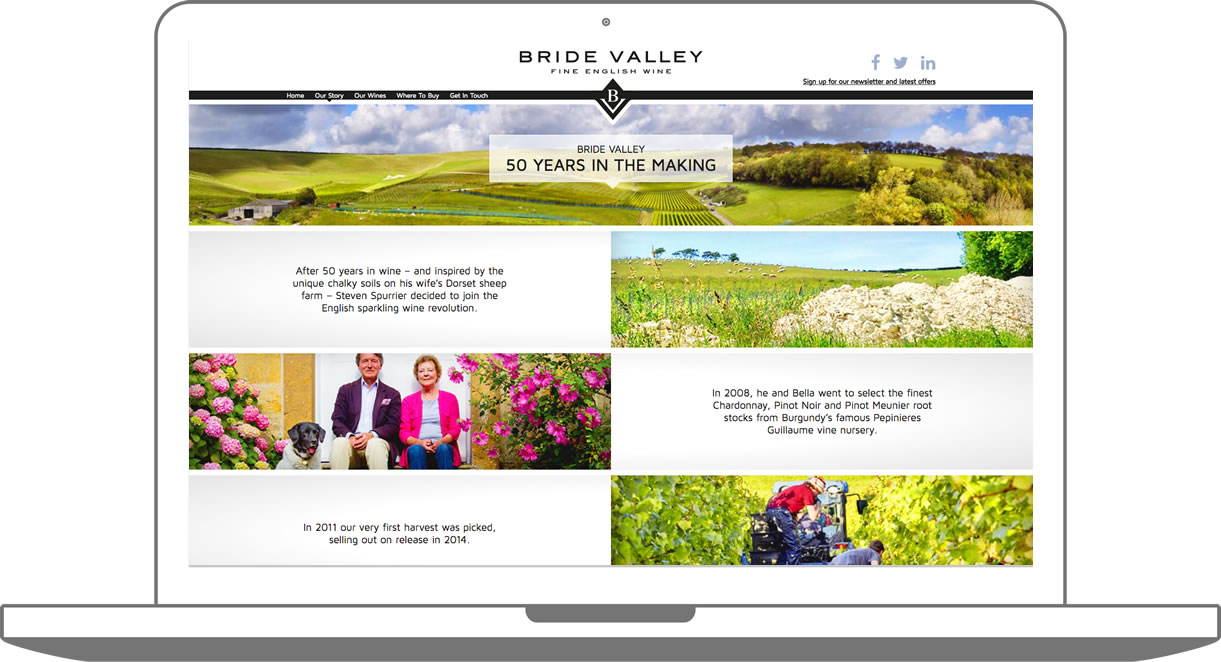 Custom WordPress build Bridevalley Vineyard